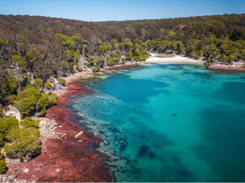 Bittangabee Bay, Ben Boyd National Park