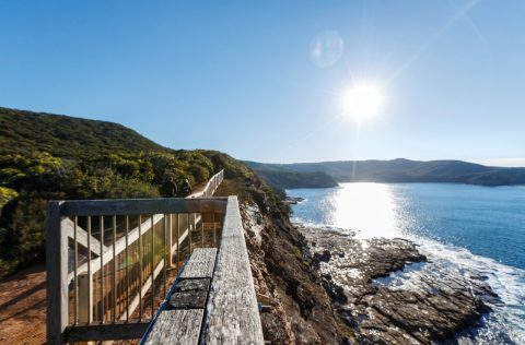 Bouddi Coastal Walk, NSW