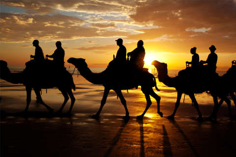 Sunset camel tour in Broome