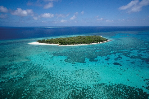 Lady Musgrave Island, Great Barrier Reef