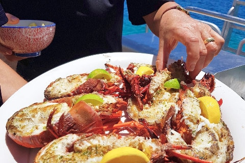 All-you-can-eat lobster