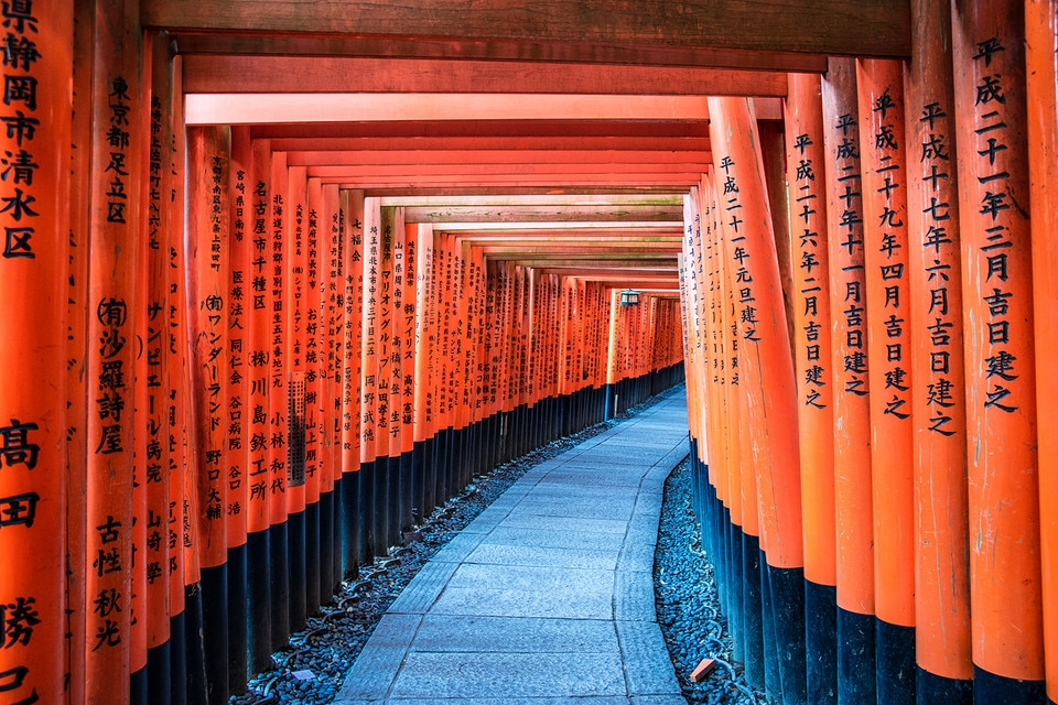 Fushimiiari shrine tunnel of torii gates