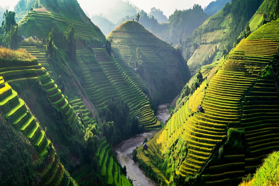 Rice fields, MuCangChai, Vietnam