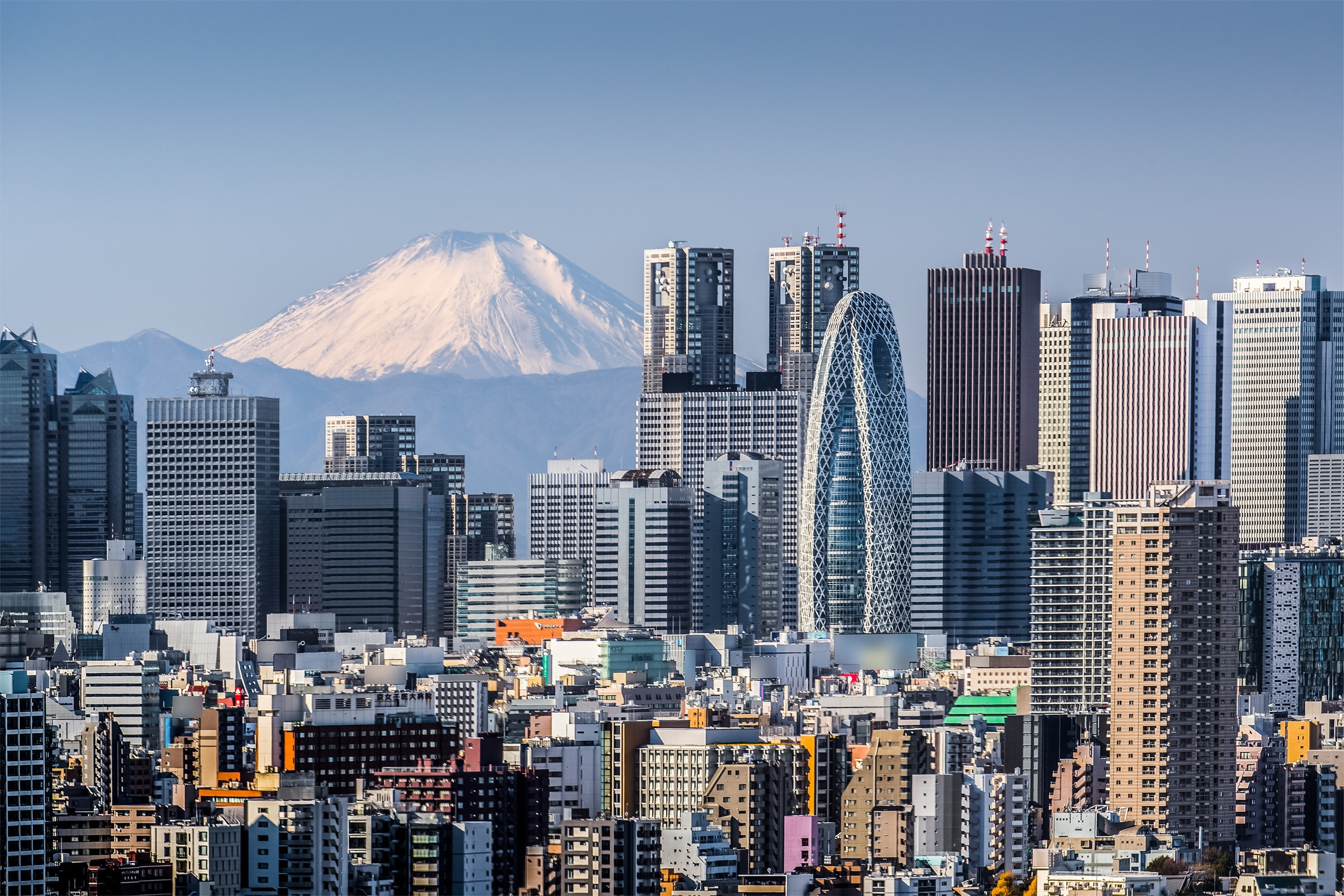 The Complete Business Travellers' Guide to Tokyo | Travel