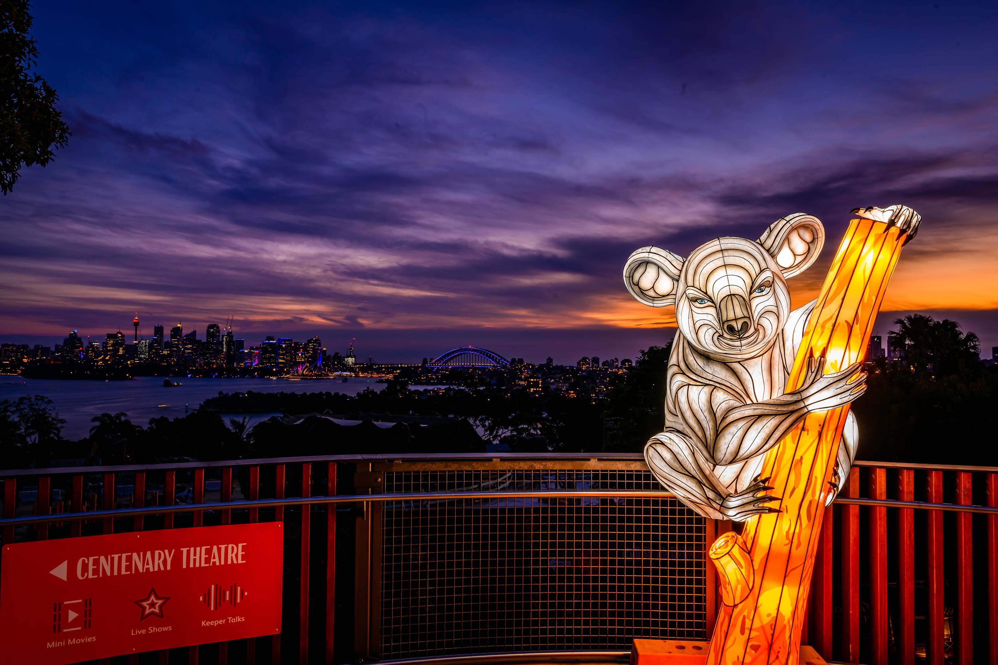 The Best Lights to See at Vivid in 2019 | Travel Insider