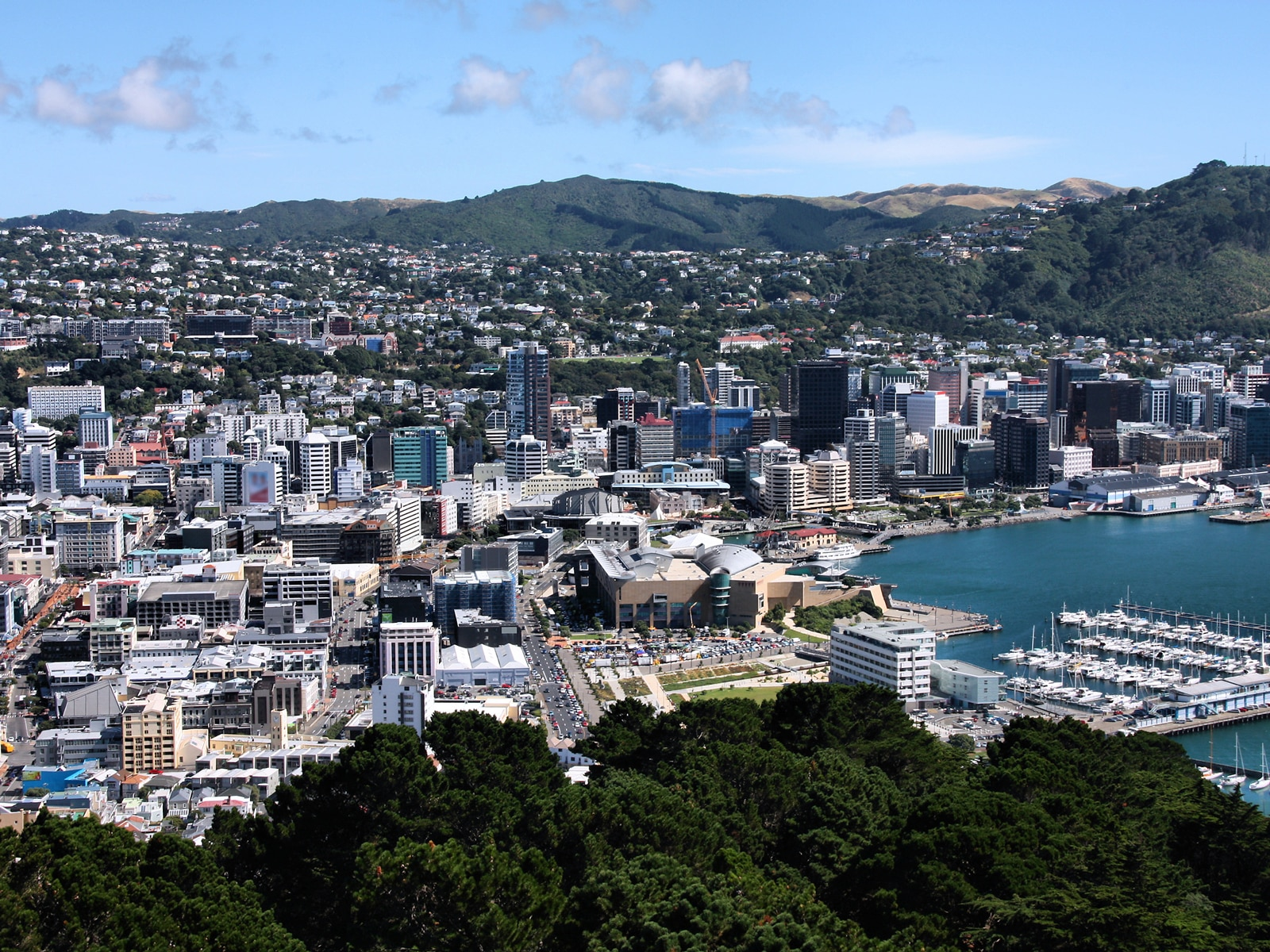 Where to Shop in Wellington | Travel Insider