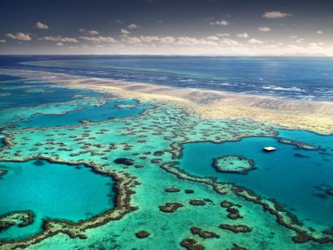 Great Barrier Reef - Queensland, Australia