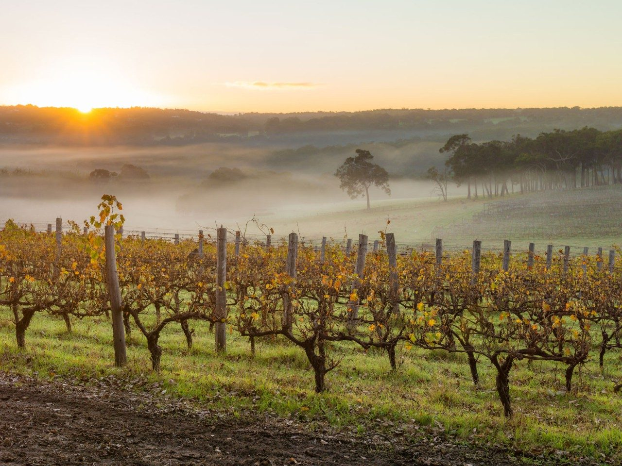 A Perfect Weekend in Margaret River