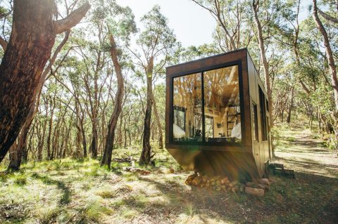 Jude by CABN, Adelaide Hills, South Australia