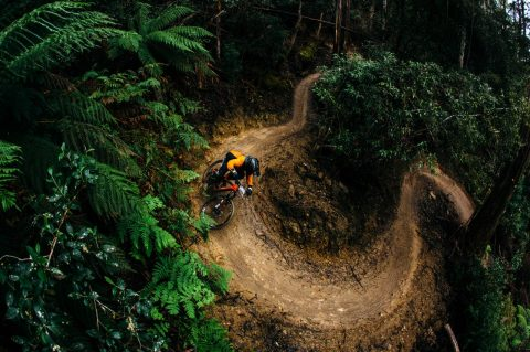 The New Derwent Valley Bike Park in Tasmania is Perfect for Mountain Bike Riders
