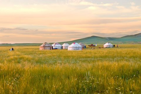 Live among nomads in Mongolia