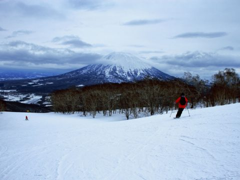 skiing-niseko-japan