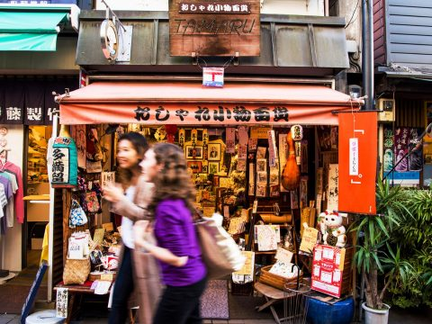 What to See and Do in the Tokyo District of Yanesen
