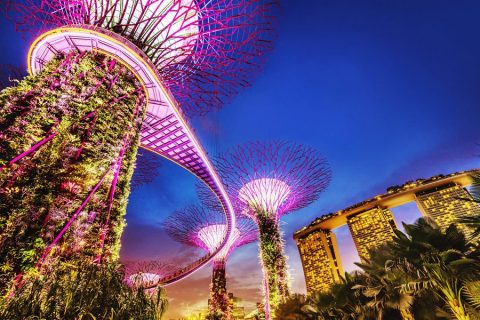 Book flights to Singapore