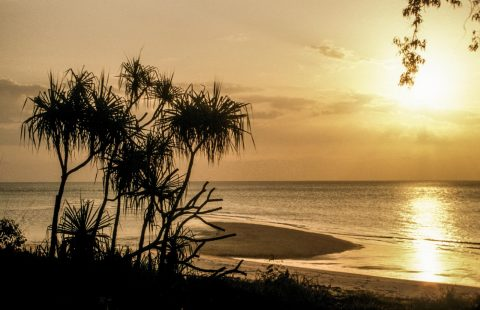 Tiwi Islands, Northern Territory