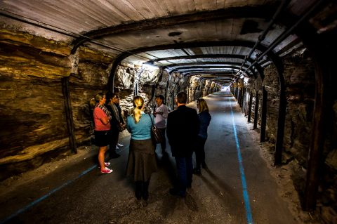 Cockatoo Island tour