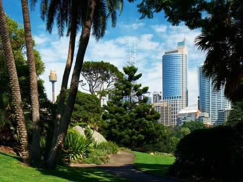 Explore the city's harbourside gardens
