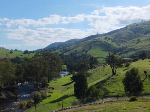 The Best Family Farmstays in New South Wales