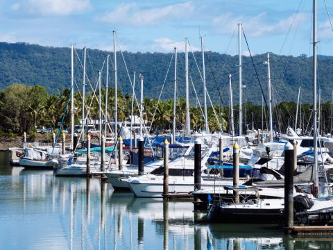 12 of the Best Things to Do in the Daintree