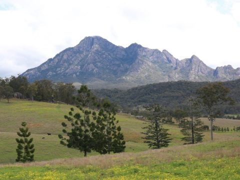 Food Tours in Scenic Rim Queensland