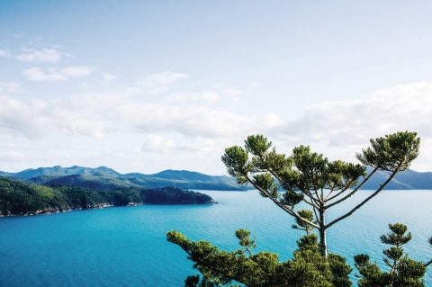 Book flights to Hamilton Island
