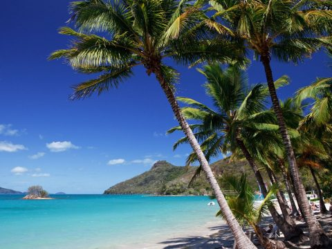 Dan Churchill's Favourite Things About Hamilton Island