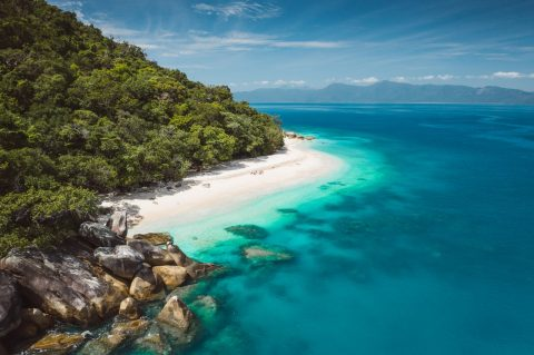 Meet the turtles on Fitzroy Island