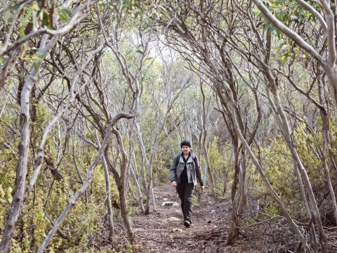 A Luxury Hiking Holiday in Kangaroo Island South Australia