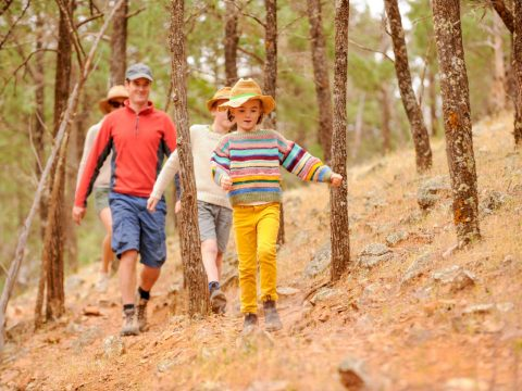 The Best Family Farm Stays in South Australia