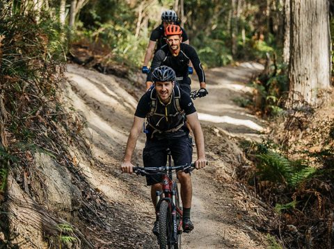 A Mountain-Biking Adventure in Derby Tasmania