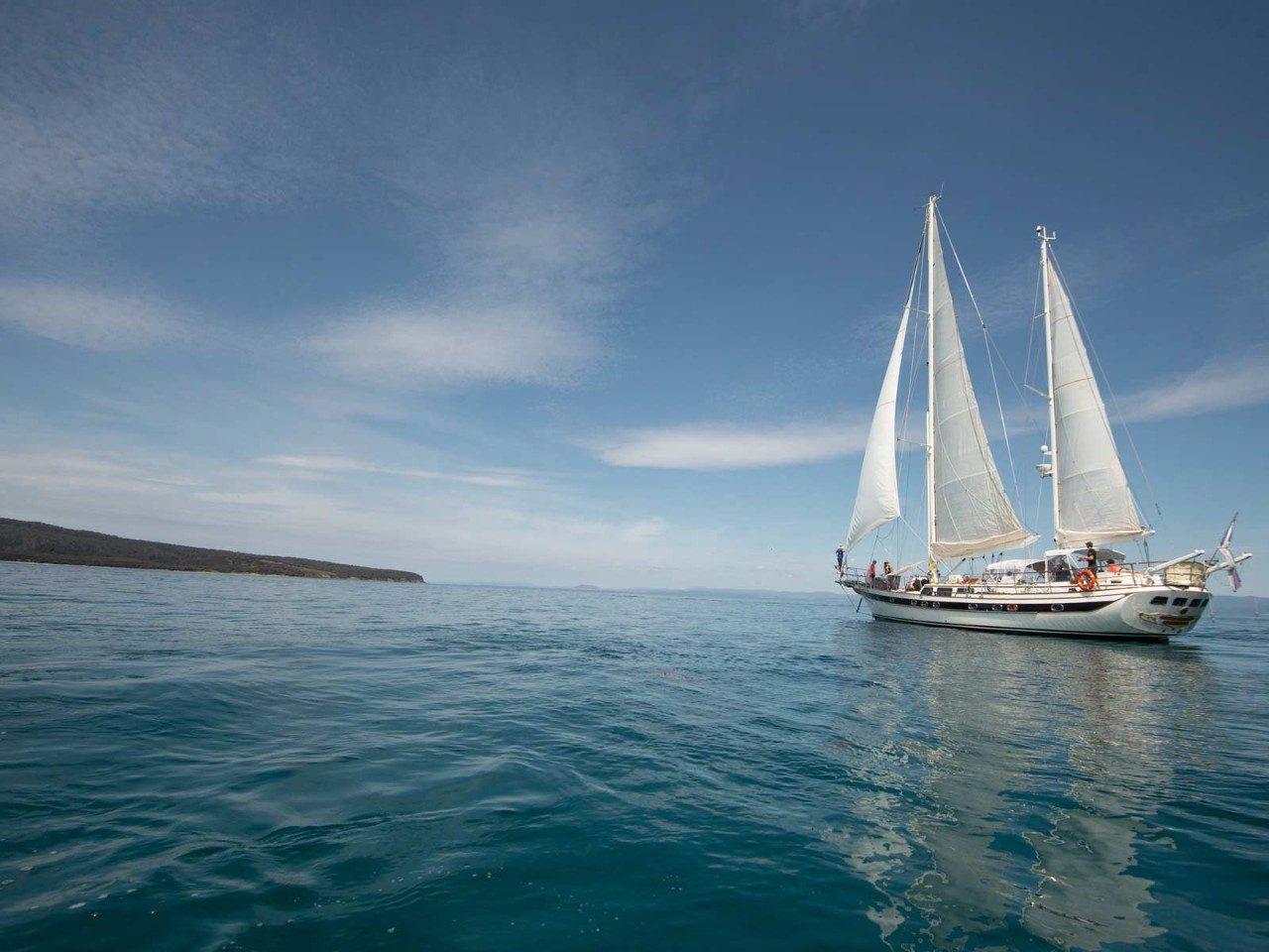 Serenely Bush Sails On Across Sea Of >> What It S Like Aboard A Luxury Tasmanian Vessel Travel Insider