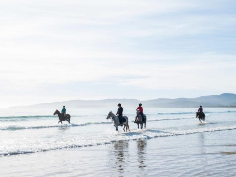 horse riding on the beach tamar valley