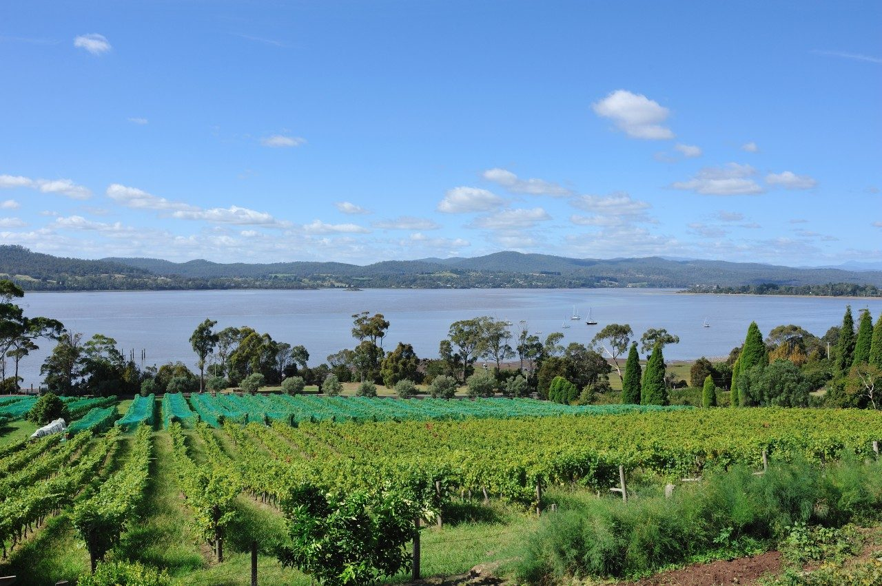 launceston wine country tasmania