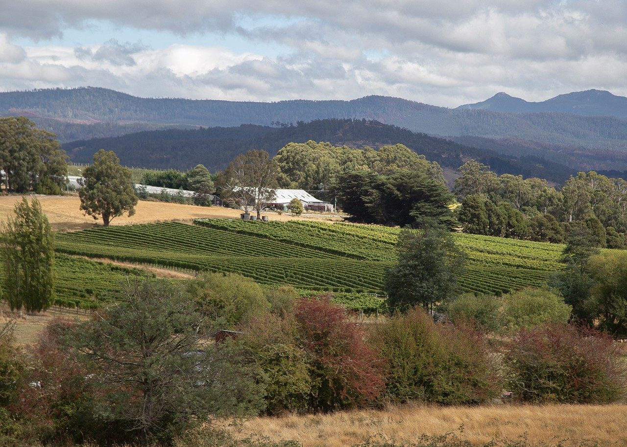 huon-valley-3.jpg