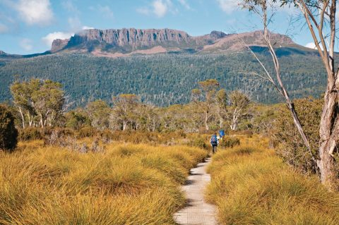 Tasmania: Go full throttle in the wilderness