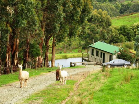 The Best Farm Stays Around Australia
