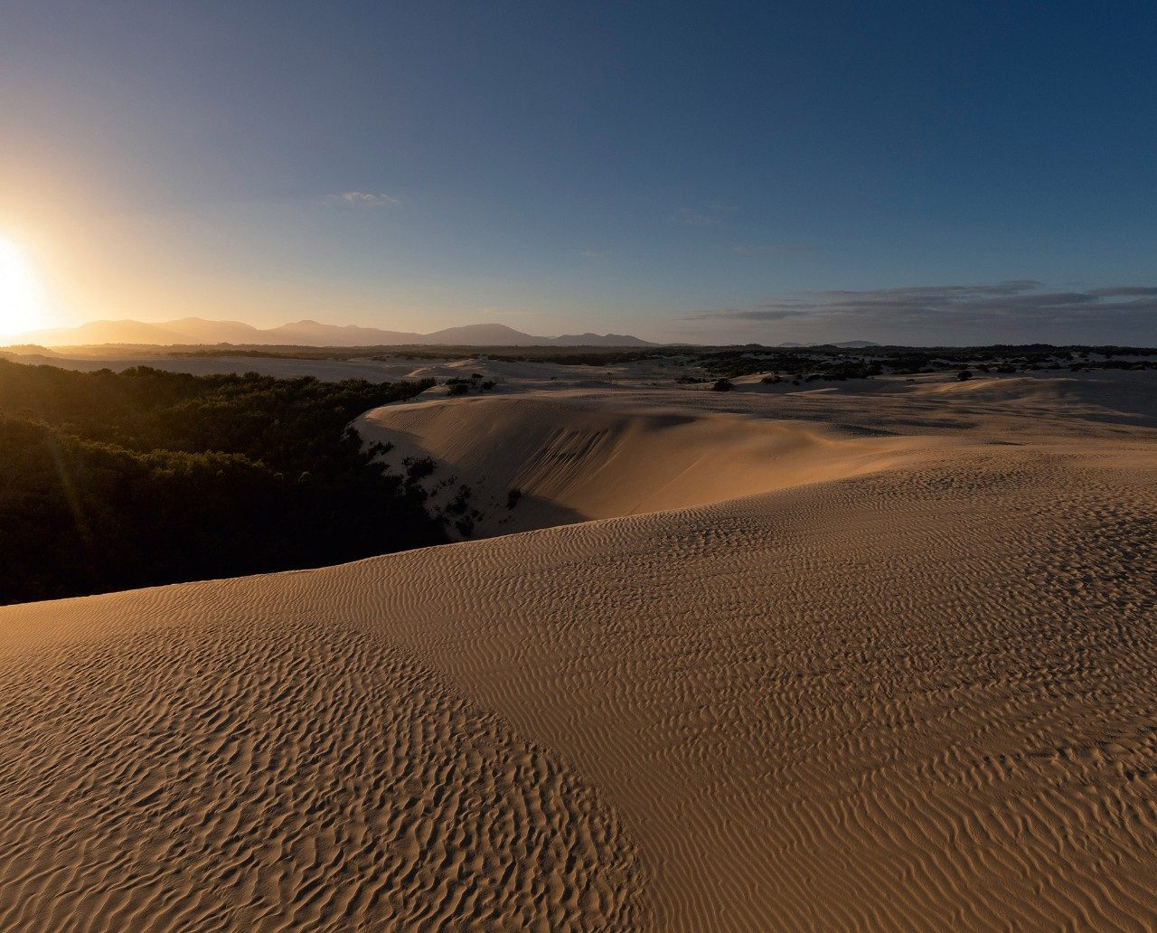 Sand dunes, Wilson's Promontory National Park, Victoria
