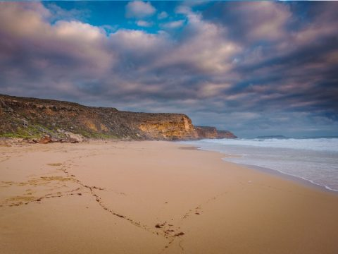 Where to Go for a Digital Detox in Australia