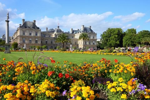 Jardin de Luxemborg and flowers, Paris