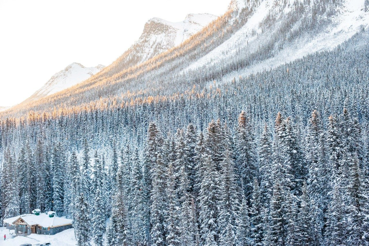 mountains and snow in the canadian rockies