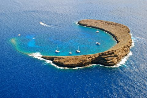 Snorkel off Molokini Crater