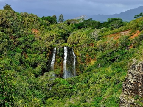 Things You Must See and Do in Kauai