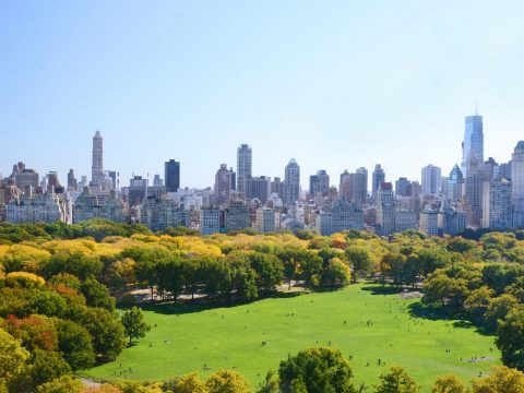 The Best Things to See and Do in New York with Kids