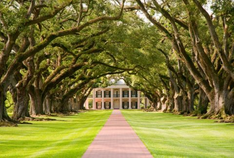 Get Gone With The Wind at a plantation