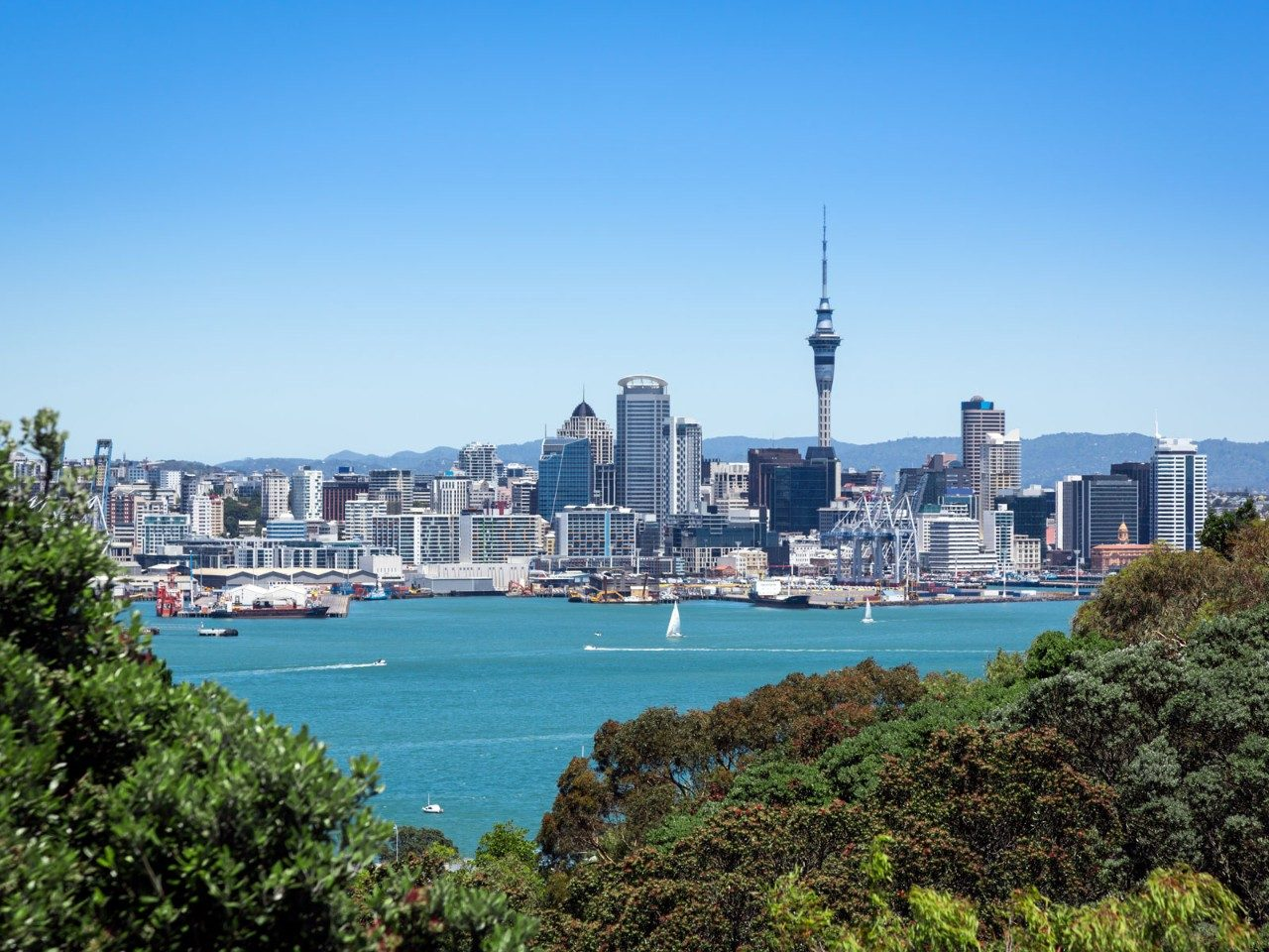 One Perfect Day in Auckland