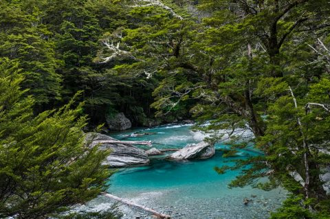 Routeburn River along the Routeburn Track, New Zealand