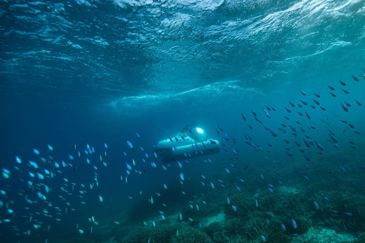 Uber Scuber on the Great Barrier Reef