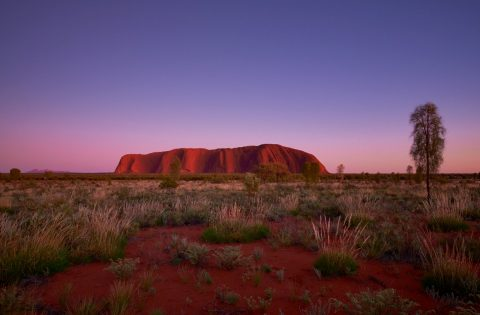 Book flights to Uluru