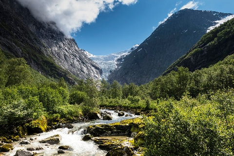 Fjords in Norway with lush greenery