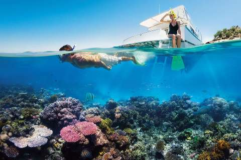 Man snokeling at the Great barrier reef while a lady sitting on a boat deck